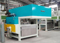High Efficiency Pulp Molding Machinery Siemens for Cup Holder