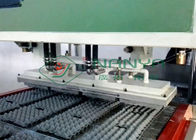 Pulp Molding Paper Egg Carton Machine Automatic Egg Trays Production Line