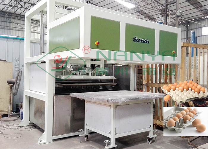 100kw Egg Tray Production Line